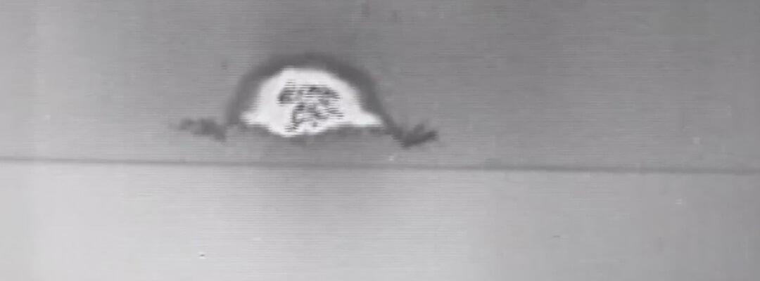 Nuclear detonation archive image
