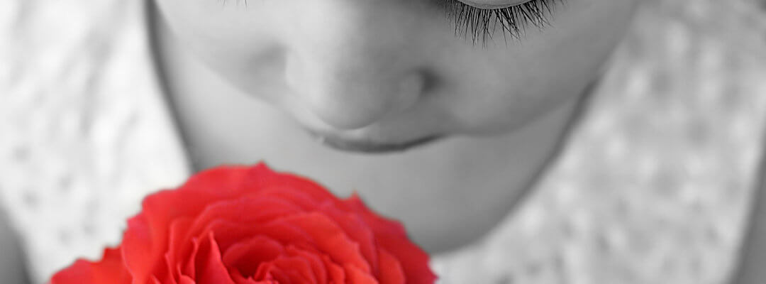 Girl smelling a red rose